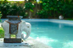 Blanquear agua verde de una piscina